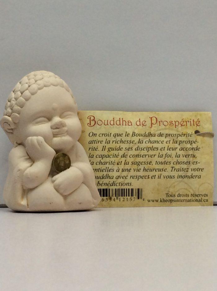 Bouddha de prosperite
