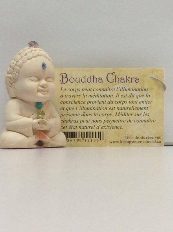 Bouddha chakra