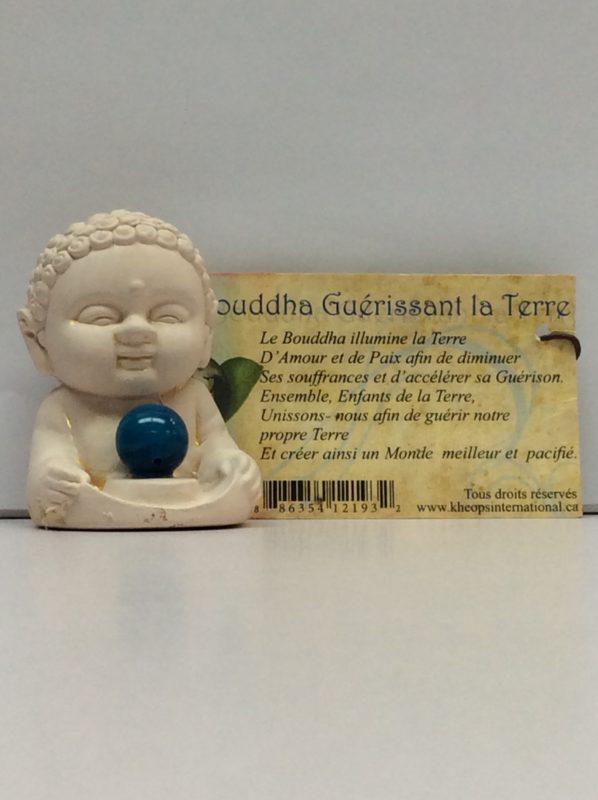 Bouddha guerissant la Terre